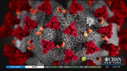 Coronavirus-Update-89-Cases-Confirmed-In-New-York
